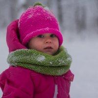 Зимняя прогулка :: Аnastasiya levandovskaya