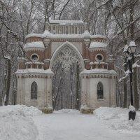 Фигурные (Виноградные) ворота :: Марина Назарова