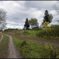 Деревня Дудкино :: Алексей Патлах