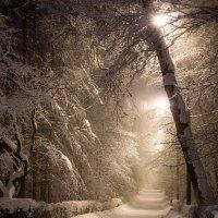 Сегодня в Москве снежно :: Fuseboy