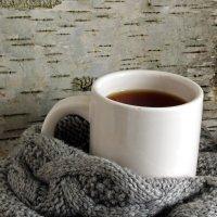 Зимний чай :: SaGa