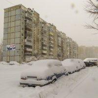 Такого снегопада давно не помнят здешние места :: Сергей Цветков