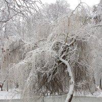 Тяжелы ледяные оковы :: shabof