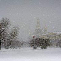 Снегопад :: Наталия П
