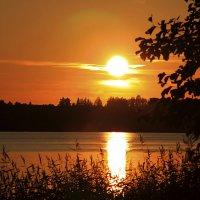 Солнце садится :: Наталья