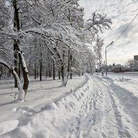 img_3923 :: Сергей Козлов
