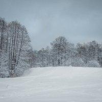 Снежное королевство :: Alena Karpova