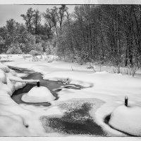 Зима берёт своё 3 :: Андрей Дворников