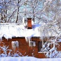 Мороз и солнце! :: Татьяна Помогалова