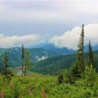 Ползут по вершинам облака :: Сергей Чиняев