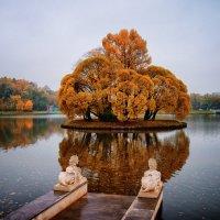 Осень в Царицыно :: Михаил Танин