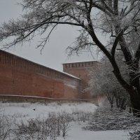 Авраамиевские ворота, Смоленская Крепостная стена. :: Aleksandr Ivanov67 Иванов