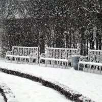 Снегопад. :: Марина Харченкова