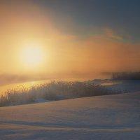 Солнце в тумане :: vladimir Bormotov