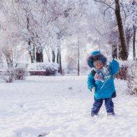 Зимнее настроение :: Ольга Губанова Столбцы