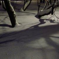 Вечерний свет :: Андрей Лукьянов