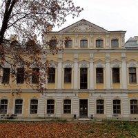 Южный флигель Шереметевского дворца :: Елена Павлова (Смолова)