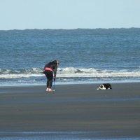 Прогулка с собакой у бурного моря :: Natalia Harries