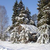 Домик в деревне.. :: Алла Кочергина