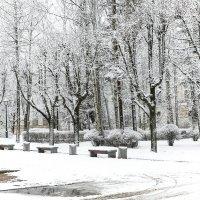Зимний парк :: Nika Polskaya