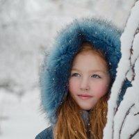 Снежная зима :: Марина Климович