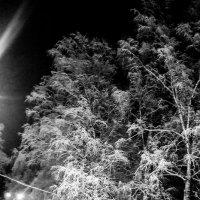 Ночное рандеву :: Олег Рябковский