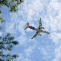Под крылом самолета... :: Александр Карманов