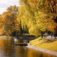 Осенний пруд в Останкинском парке :: Михаил Танин