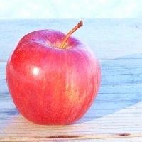 Зимнее яблоко :: Swetlana V