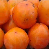 Оранжевая хурма :: Нина Корешкова