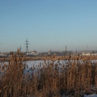 Карасук. Озеро. :: Олег Афанасьевич Сергеев