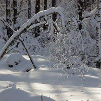 ледяные бусы :: оксана