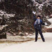 Снежное настроение :: Ольга Губанова Столбцы