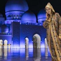 Экскурсия в мечеть :: Дмитрий Ветчинин