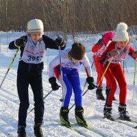 Лыжная гонка... :: Александр Широнин