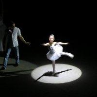 В московском цирке Ю. Никулина :: Елена Лапина