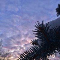 Небеса, сквозь природную призму :: Owl Tyan