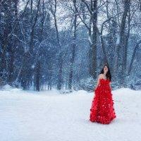 Зимняя сказка :: Анжелика Маркиза