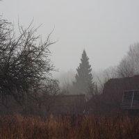 Проклятые старые дома :: Василий Ворона