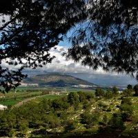 Вид на гору Тавор :: Аркадий Басович