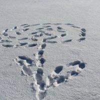 Цветок на снегу :: Mariya laimite