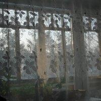 Окно :: Олег Афанасьевич Сергеев