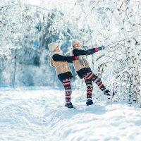 Зимняя сказка :: Надежда Городецкая