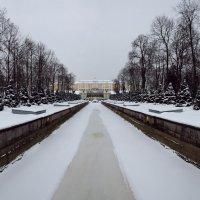 Зимняя классика Петергофа... :: tipchik