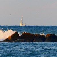 море средиземное. :: Пётр Беркун