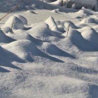 Зимние барханы окружили нас... :: veilins veilins