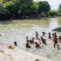 Мальчишки, они и в Индии мальчишки... :: Михаил Юрин