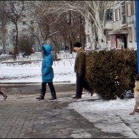 Собака лает, а они себе идут... :: Нина Корешкова