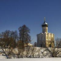 Храм Покрова-на Нерли :: Сергей Цветков