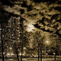 Взгляд луны из за дома на проспект Космонавтов :: Юрий Плеханов